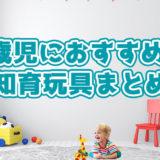 2歳におすすめの知育玩具おすすめランキング!